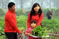 市民收获自己种植的蔬菜_Copy_Copy.jpg