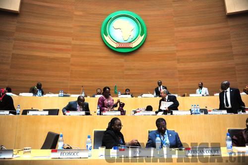 非洲贸易一体化现状分析